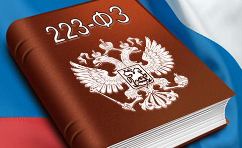 bankovskaya-garantiya-223-fz